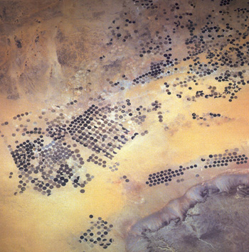 circular pivot irrigation fields photographed by orbiting satellites