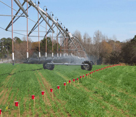 Irrigation scheduling - Crop water use with center Pivots