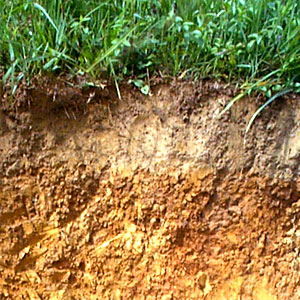 Water storage capacities of soils for Soil zone of accumulation