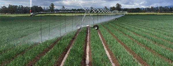 soil's capacity