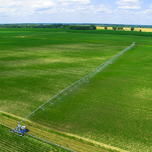 field with linear irrigation system