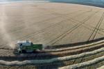 green circle farming