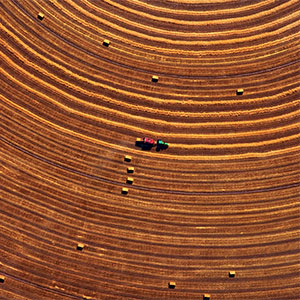 circle farming